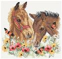 Horse Friends Stamped Kit