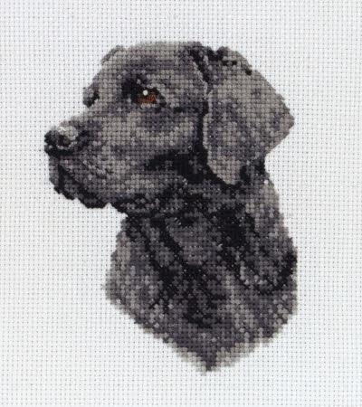 Kit Weimaraner Dog 1 Cross Stitch Chart
